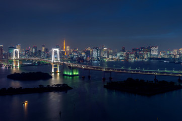 Wall Mural - View of Tokyo cityscape at night in Japan.