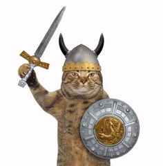 The cat viking in a helmet with horns holds a sword and a round shield with a dragon image. White background.