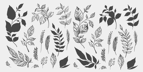 Set of leaves. Hand drawn decorative elements. Vector illustration Fotoväggar