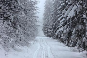 Zimowy krajobraz w polskich górach - fototapety na wymiar