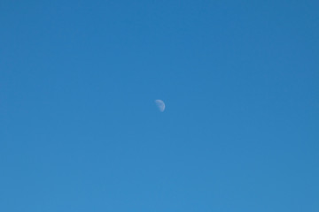 moon in the sky