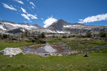 Beautiful lush greenery and pond along the 20 Lakes Basin hiking trail in California Eastern Sierra Nevada mountains