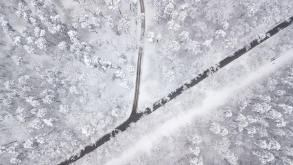 Top down view of the forest in winter. Winter landscape in the forest. Flying over ski track in winter forest. Top down view of ski road. Drone follow the walking girl skier at ski track. Winter lands