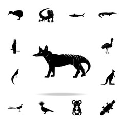 Tasmanian wolf icon. Detailed set of Australian animal silhouette icons. Premium graphic design. One of the collection icons for websites, web design, mobile app