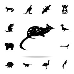 The marsupial marten icon. Detailed set of Australian animal silhouette icons. Premium graphic design. One of the collection icons for websites, web design, mobile app