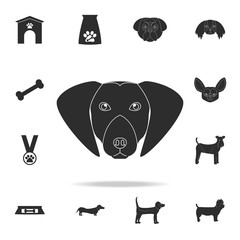labrador retriever face icon. Detailed set of dog silhouette icons. Premium graphic design. One of the collection icons for websites, web design, mobile app