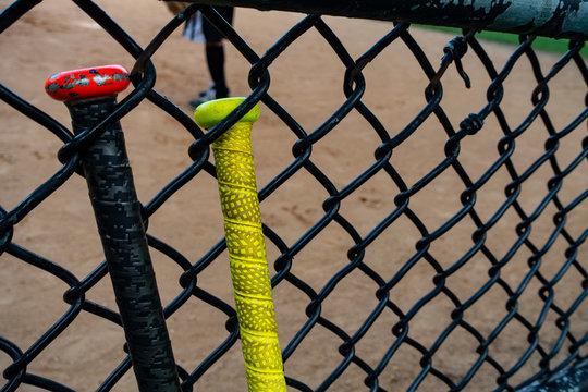 baseball / softball bats on a batting fence