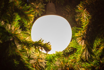 blurred image of tree and lamp