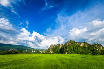 Travel Noen Maprang