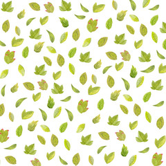 Pattern of beautiful watercolor flowers and leaves