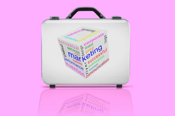 Business suitcase for travel with reflection