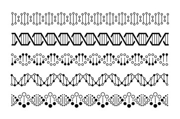 DNA elements. Molecule genome code, chromosome spirals and double helix chains. DNA vector concept isolated on white background