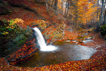 amazing autumn landscape, small waterfall in the mountains forest, fast river stream between leaves, stunning nature sunrise morning background image, Europe, beauty world