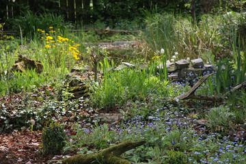 Frühling im Naturgarten