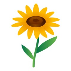 Sunflower icon. Isometric of sunflower vector icon for web design isolated on white background