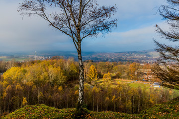 image of a leafless tree with trees and the village of Vielsalm in the background from the hill Bec du Corbeau on a wonderful and sunny autumn day with a blue sky and haze in of the Belgian Ardennes