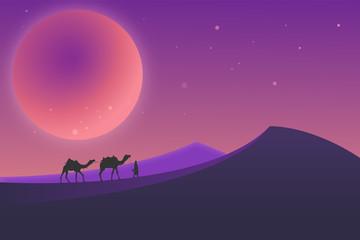 Desert landscape during the night