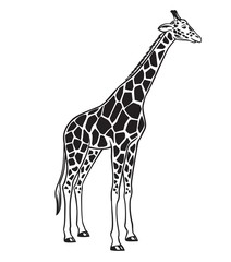 Giraffe isolated black icon