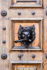 Boar door knocker