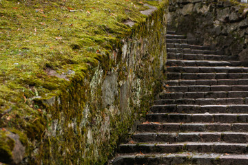 Beautiful stone stairs with moss.