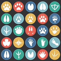 Animal foot prints icons set on color circles black background for graphic and web design, Modern simple vector sign. Internet concept. Trendy symbol for website design web button or mobile app