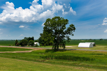 View of a farm in a rural area of the State of Mississippi, near the Mississippi river, USA.