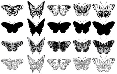 Black and white set of various butterflies forms