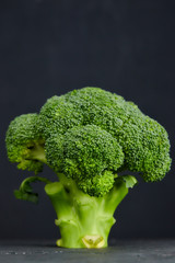 one head of healthy salad. fresh green broccoli. horizontal view of green vegetable flower. healthy diet. copy space. green cabbage closeup on black background. place for text.