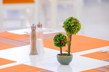 Small trees on the table 1