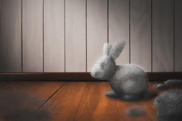 Dust bunny on the floor