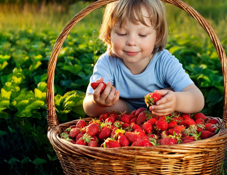 cheerful boy with basket of berries
