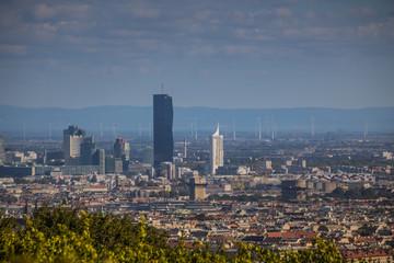 Spätsommerliche Weinwanderung auf dem Wilhelminenberg in Wien, Österreich