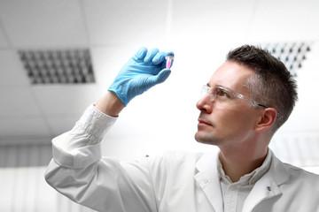 Fototapeta Badania i diagnostyka laboratoryjna.  Laborant ogląda preparat w próbówce. obraz