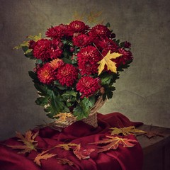 Still life with beautiful autumn bouquet of chrysanthemums