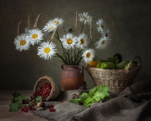 Still life with beautiful bouquet of daisy flowers