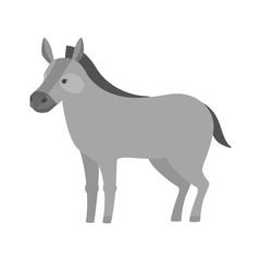 Funny donkey. Domestic animal character. Gray friendly