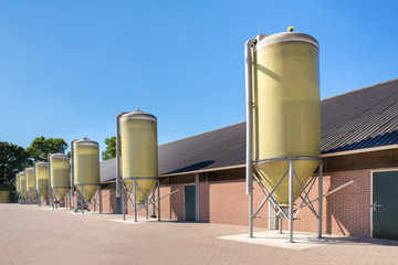 Feed silos in a row at cattle shed