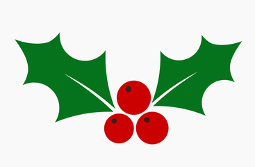 Christmas holly berries flat icon.