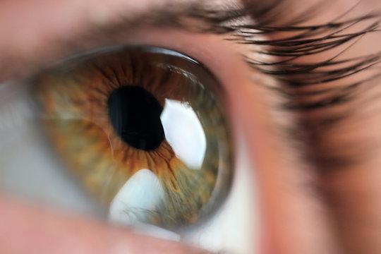 Closeup view of beautiful eye