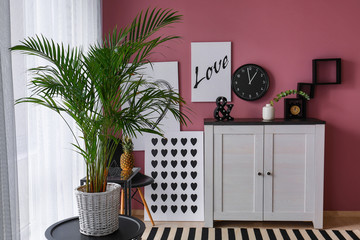 Decorative Areca palm on table in interior of room