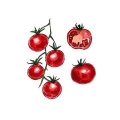 Watercolor tomato set