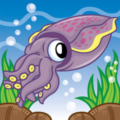 Squid swimming cartoon, cartoon cute, animal cute
