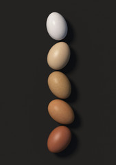 Five multi colored chicken eggs lie in a row on a black background. Top view. 3D render.