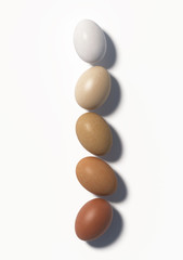 Five multi colored chicken eggs lie in a row on a white background. Top view. 3D render.
