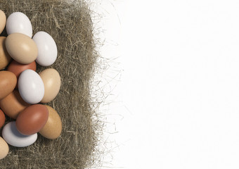 Many multi colored chicken eggs lie in bulk on a haystack on white background. Copy space. Top view. 3D render.