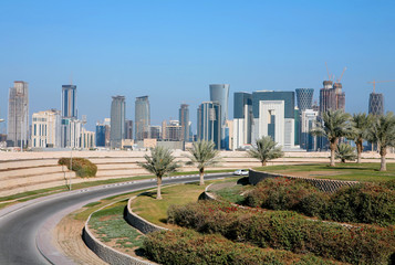 Canvas Prints Palm tree Doha skyline