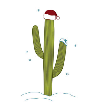 Saguaro Cactus wear santa hat for christmas. Christmas tree in tropical climate concept. Vector