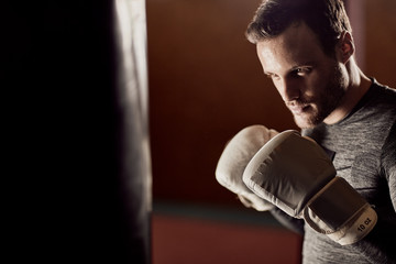 fit boxer training