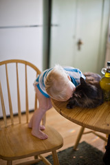 Young toddler standing on a chair and kissing a cat that is sitting on a table in the kitchen.