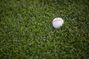 Single baseball lying on green glass.